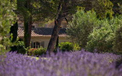 Stroke of charm in Baux-de-Provence
