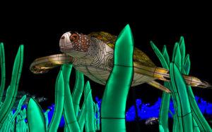 Odyssée sous-marine aujardin des Plantes