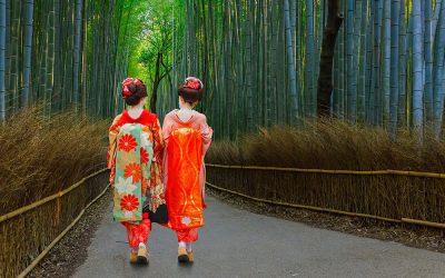 Asia : le seul chemin entre vous et l'Asie
